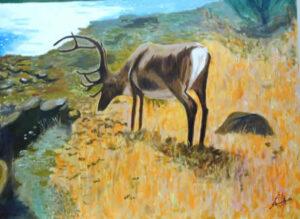 El ciervo y su reflejo - Fábulas de Esopo