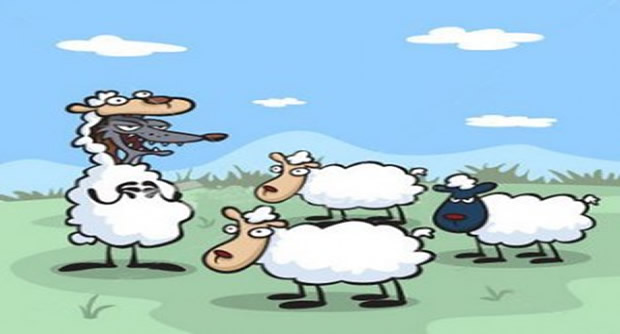 Los lobos y las ovejas - Fábulas de Esopo