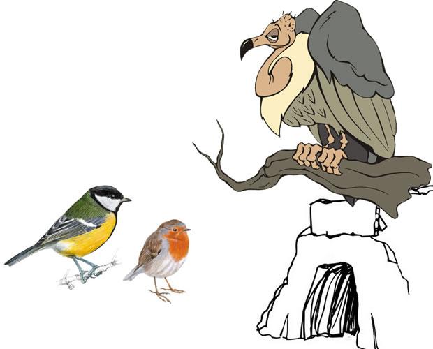 El buitre y las otras aves - fábulas de Esopo