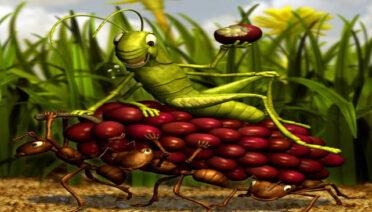 La cigarra y la hormiga - fábulas de Esopo